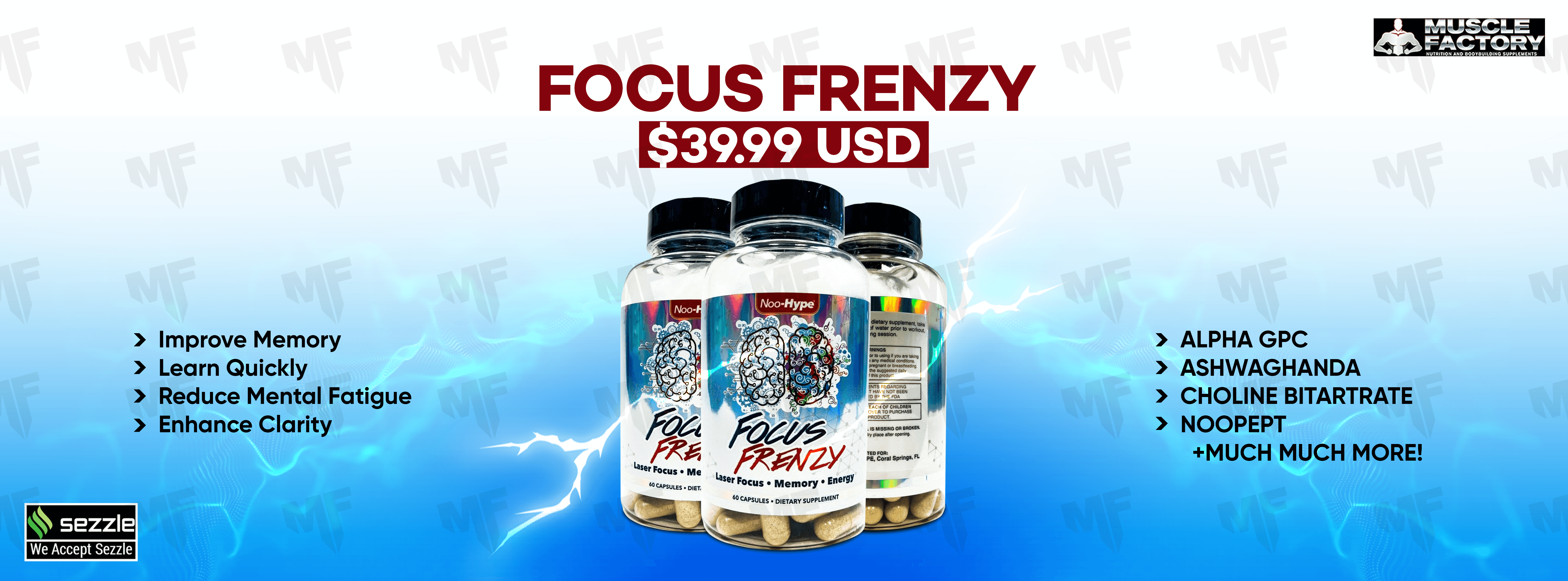 Focus Frenzy Banner Muscle Factory